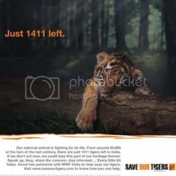Save our Tigers Graphics